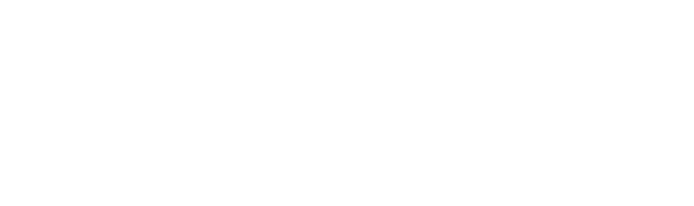 Fleming Software